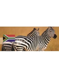 South Africa (3)